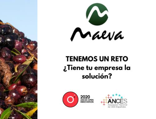 El reto de Aceites Maeva en Ances Open Innovation: un sistema informático que optimice los pedidos